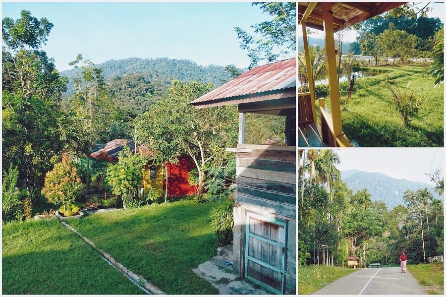 Friendship Guesthouse Ketambe Sumatra