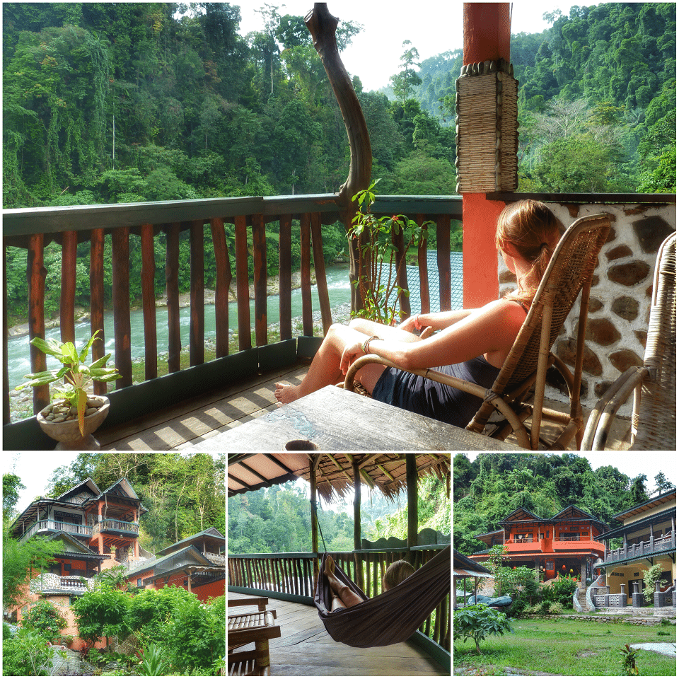 Hotels in Bukit Lawang