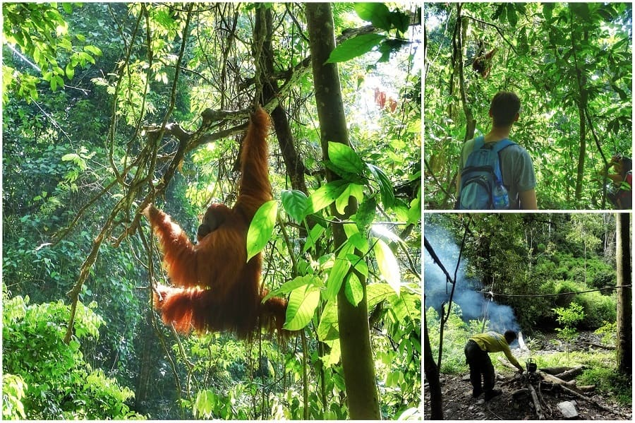 Vakantie Sumatra
