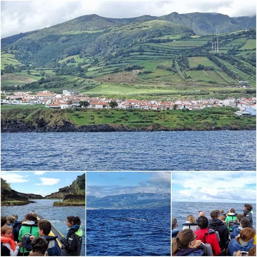 Walvissen spotten Sao Miguel Ponta Delgada