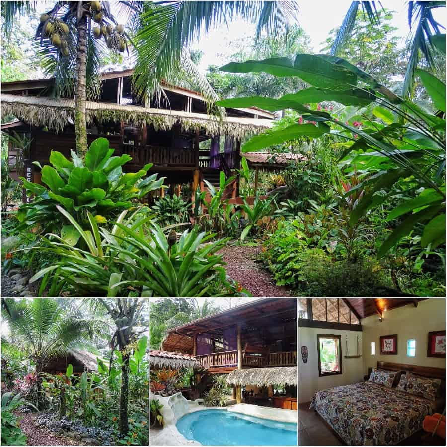 leukste eco lodge Costa Rica