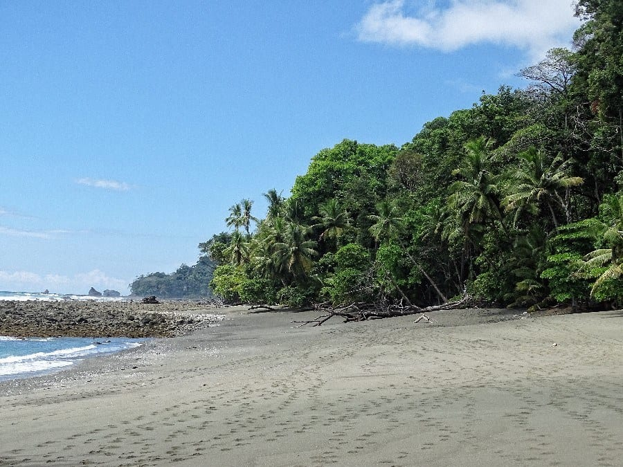 Corcovado national park hiken