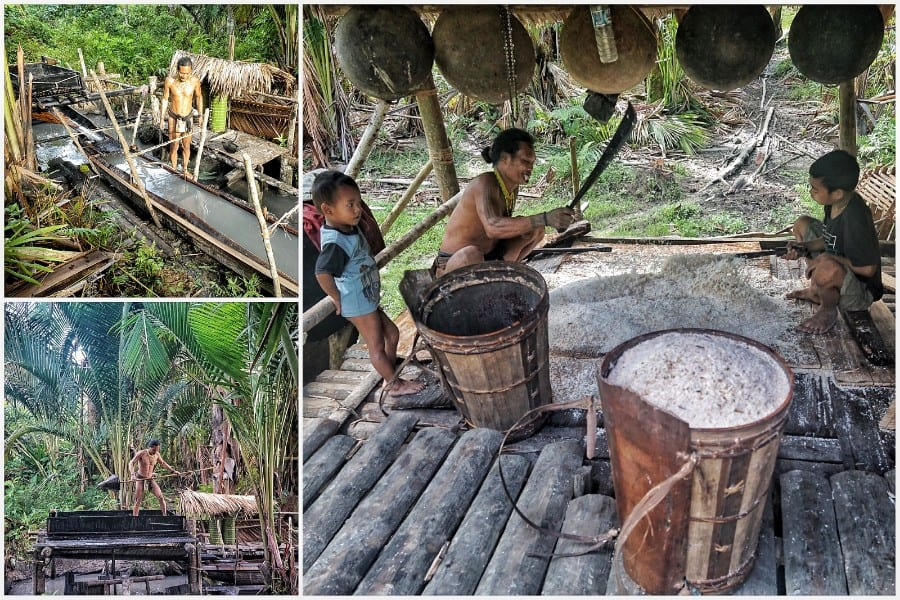 Siberut eiland Mentawai