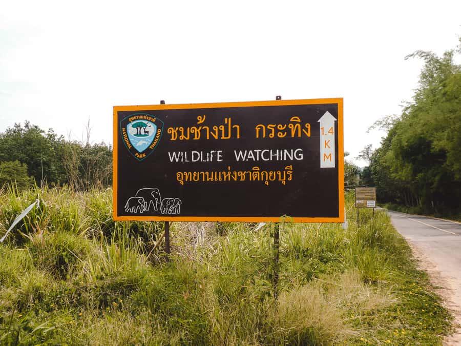 wildlife watching kui buri