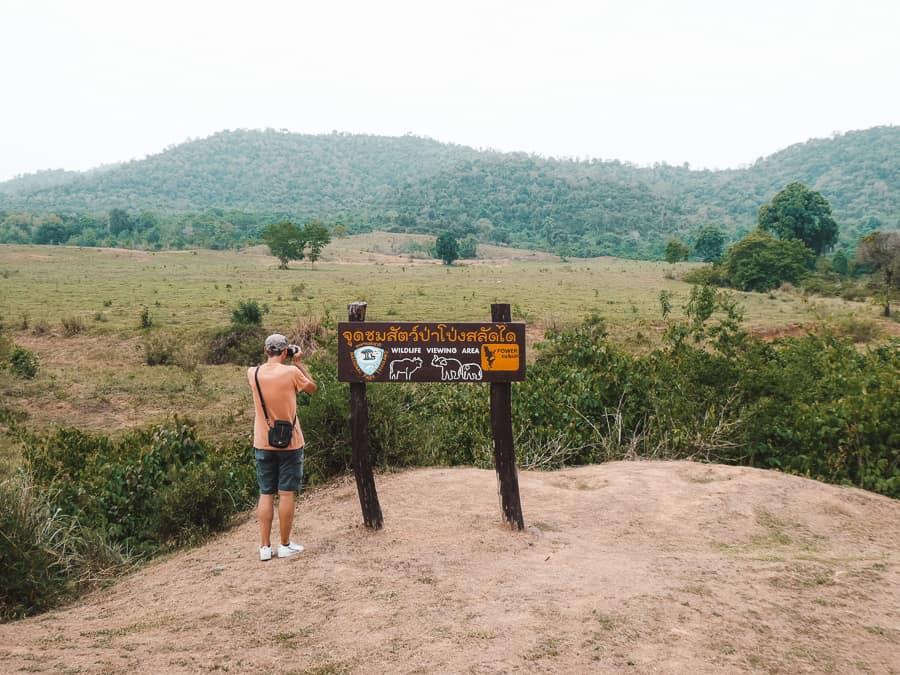olifanten spotten thailand