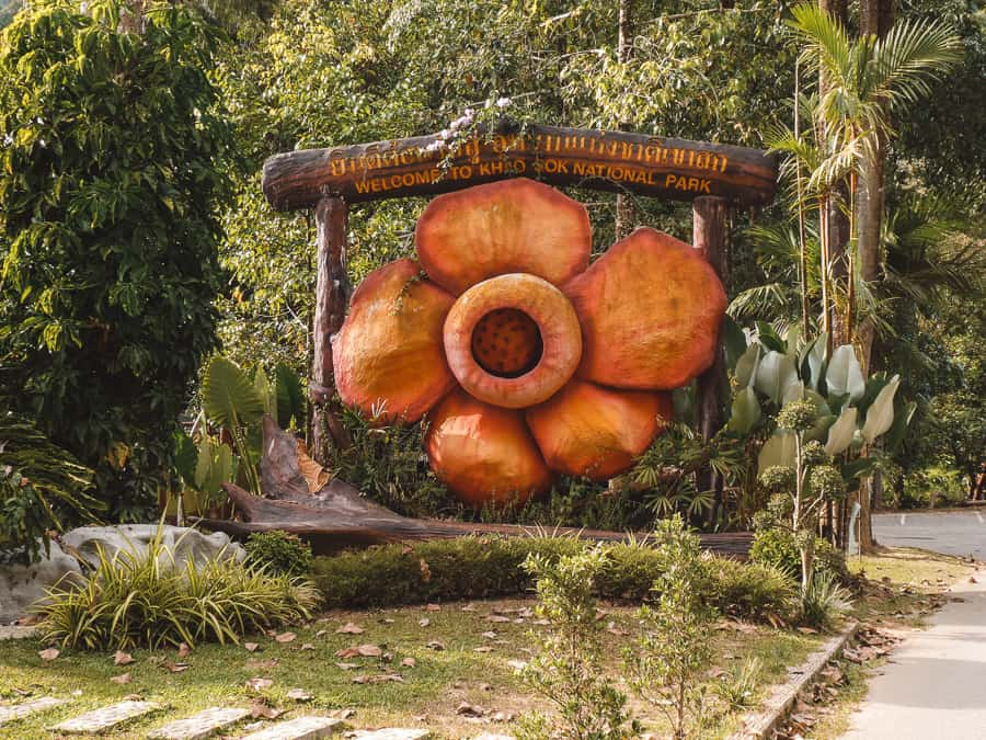 tips khao sok national park