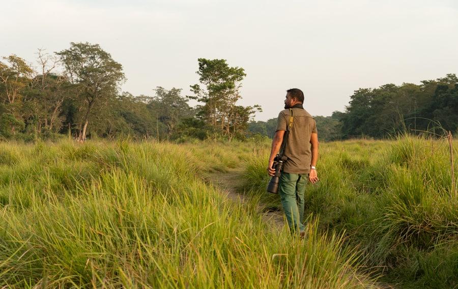 tijgers spotten nepal