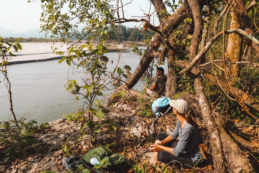 tijgers nepal