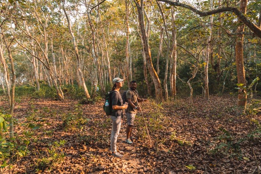 jungle trek Chitwan
