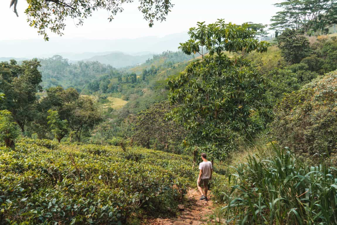omgeving Kandy